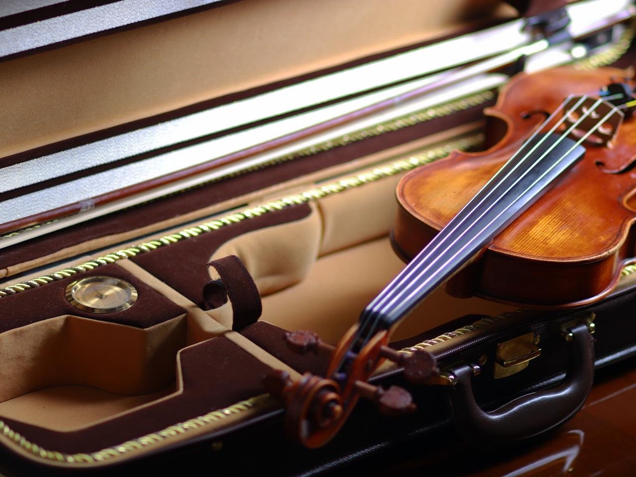 Custodia pregiata per strumento ad arco