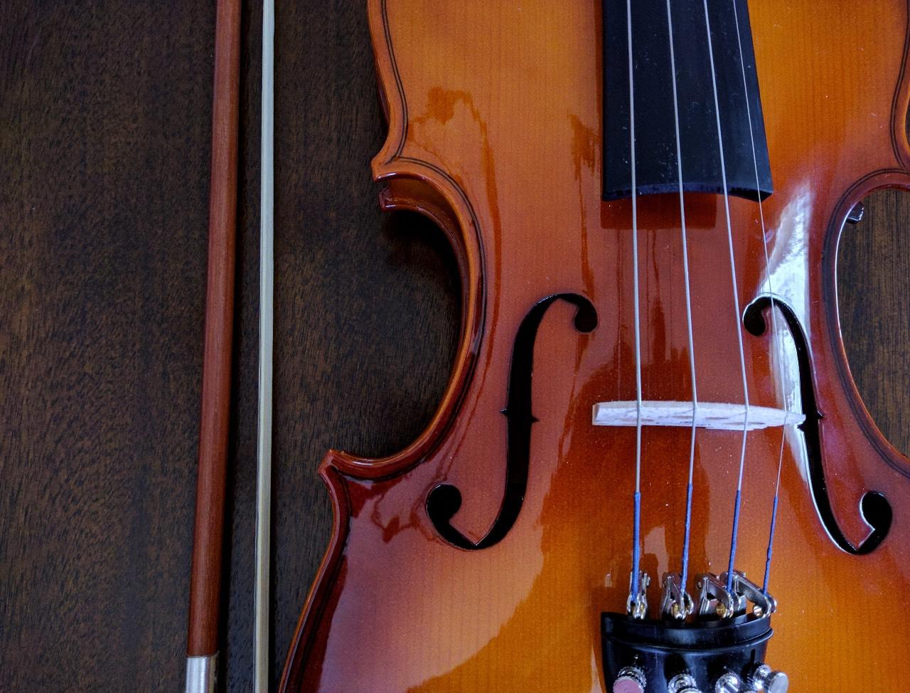 Come è fatto un violino